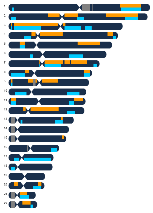 Mom's Cousin's Chromosome Browser Orange = Mom Blue = Mom's brother