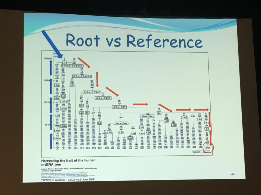 root-vs-reference